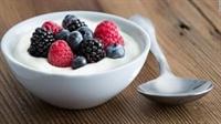 yogurt store new york - 1