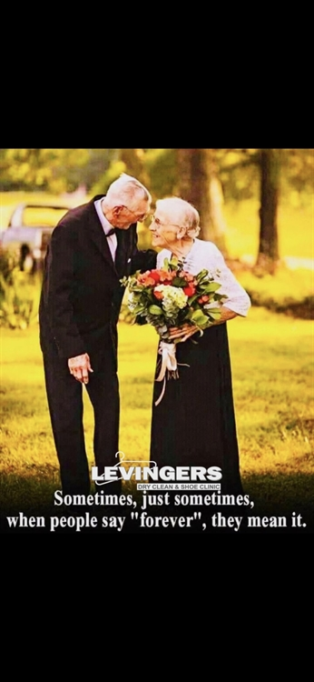 levingers dry cleaners - 10