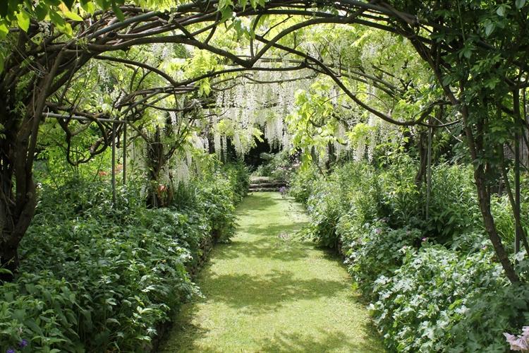 the orchard garden café - 4