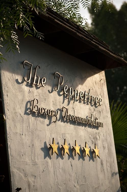 luxury accommodation business heart - 9