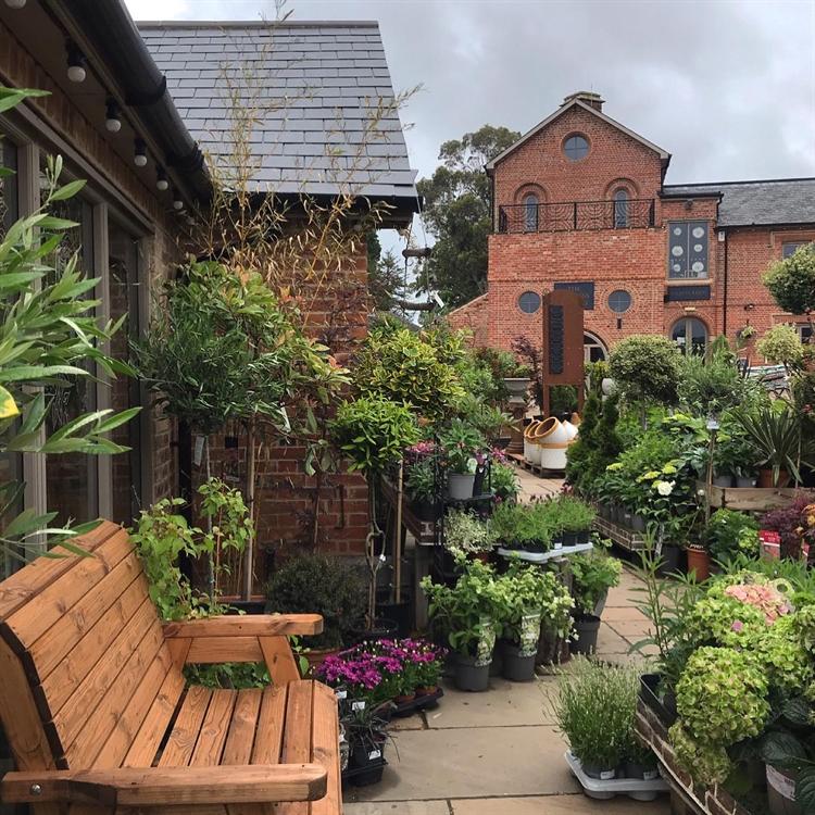 garden centre leicestershire - 4