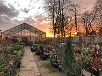 garden centre leicestershire - 2