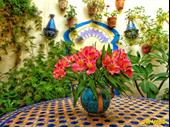 Long Established Three Bedroom Successful Guesthouse In Andalucia For Sale