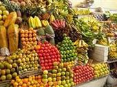 Fruit And Vegetables Shop In Bordeaux For Sale