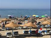 Beach Bar Restaurant In Marbella For Sale